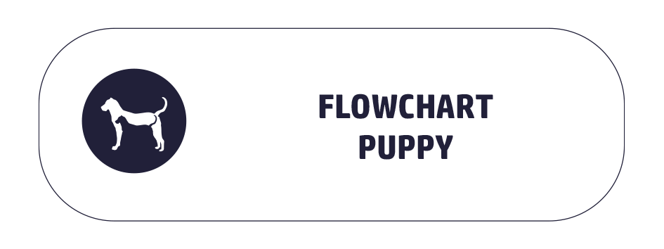 button-flowchart-puppy.png