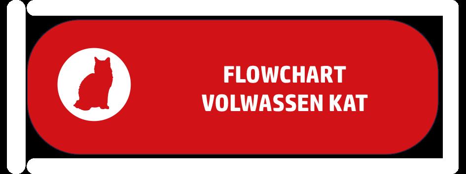 button-flowchart-volwassen-kat.png